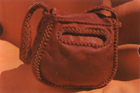This picture, of the back of the purse, shows the oval opening to the full size back pocket.